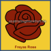 Freya's Rose draws us to her
